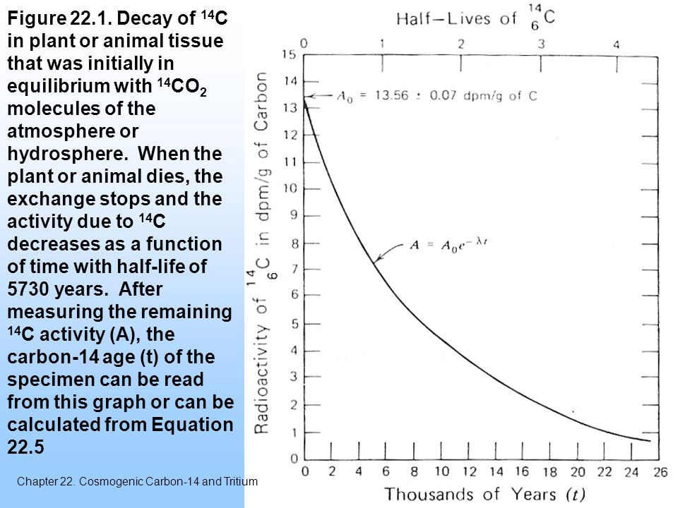 Figure Decay of 14C in plant or animal tissue that was initially in equilibrium with 14CO2 molecules of the atmosphere or hydrosphere. When the plant or animal dies, the exchange stops and the activity due to 14C decreases as a function of time with half-life of 5730 years. After measuring the remaining 14C activity (A), the carbon-14 age (t) of the specimen can be read from this graph or can be calculated from Equation 22.5
