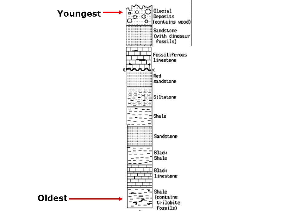 Youngest Oldest