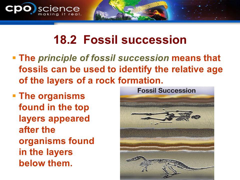 18.2 Fossil succession