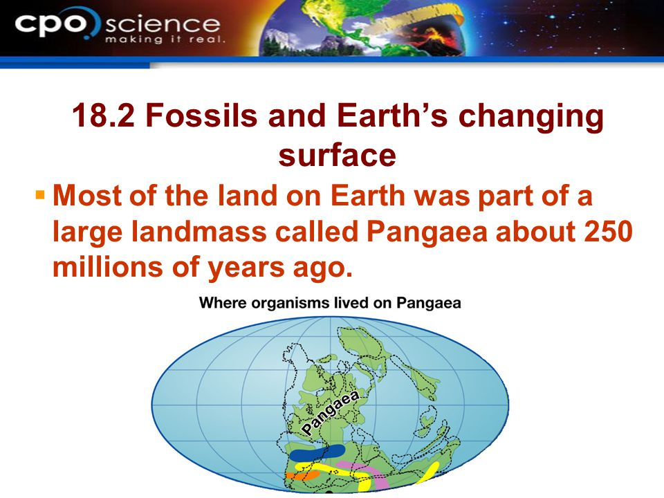 18.2 Fossils and Earth's changing surface