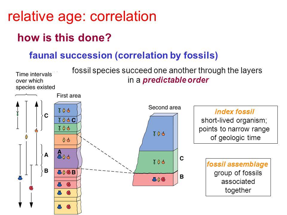 relative age: correlation