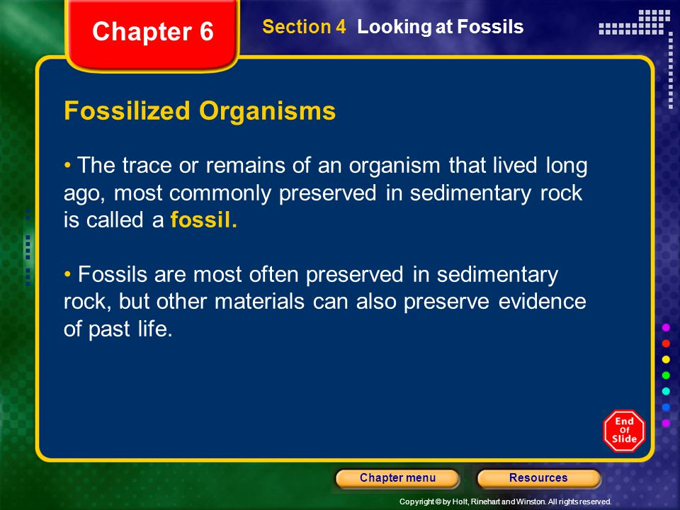 Chapter 6 Fossilized Organisms