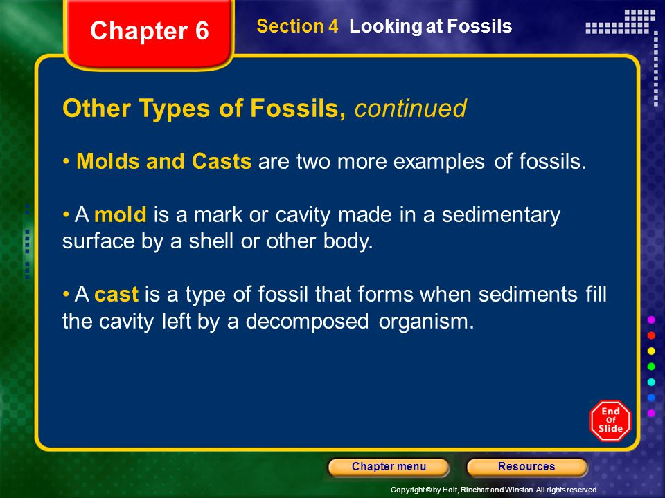 Other Types of Fossils, continued