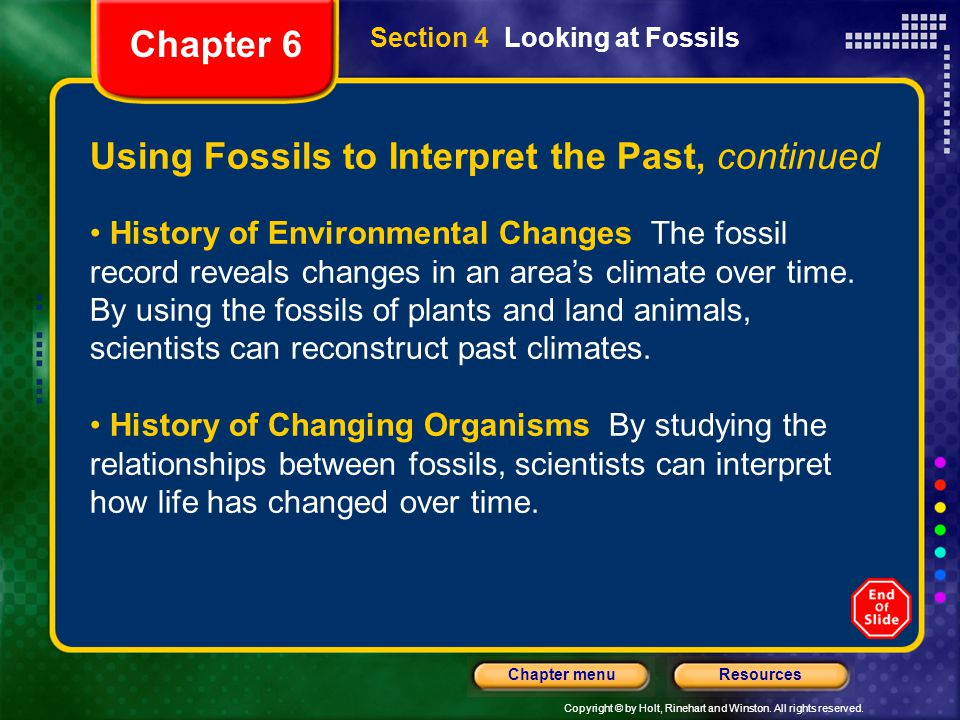 Using Fossils to Interpret the Past, continued