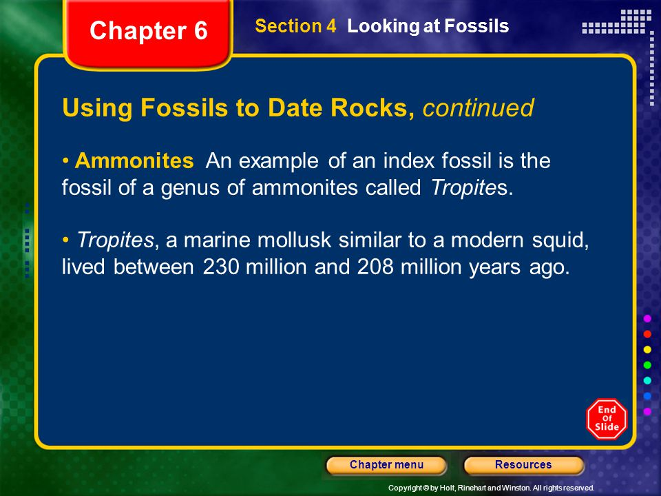 Using Fossils to Date Rocks, continued
