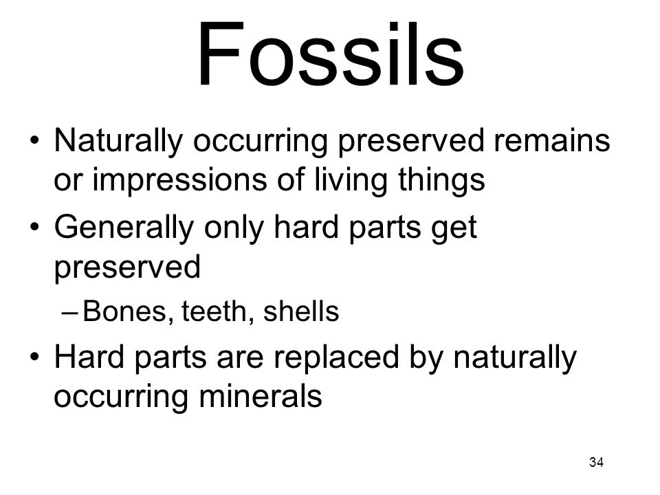 April 17 Fossils. Naturally occurring preserved remains or impressions of living things. Generally only hard parts get preserved.