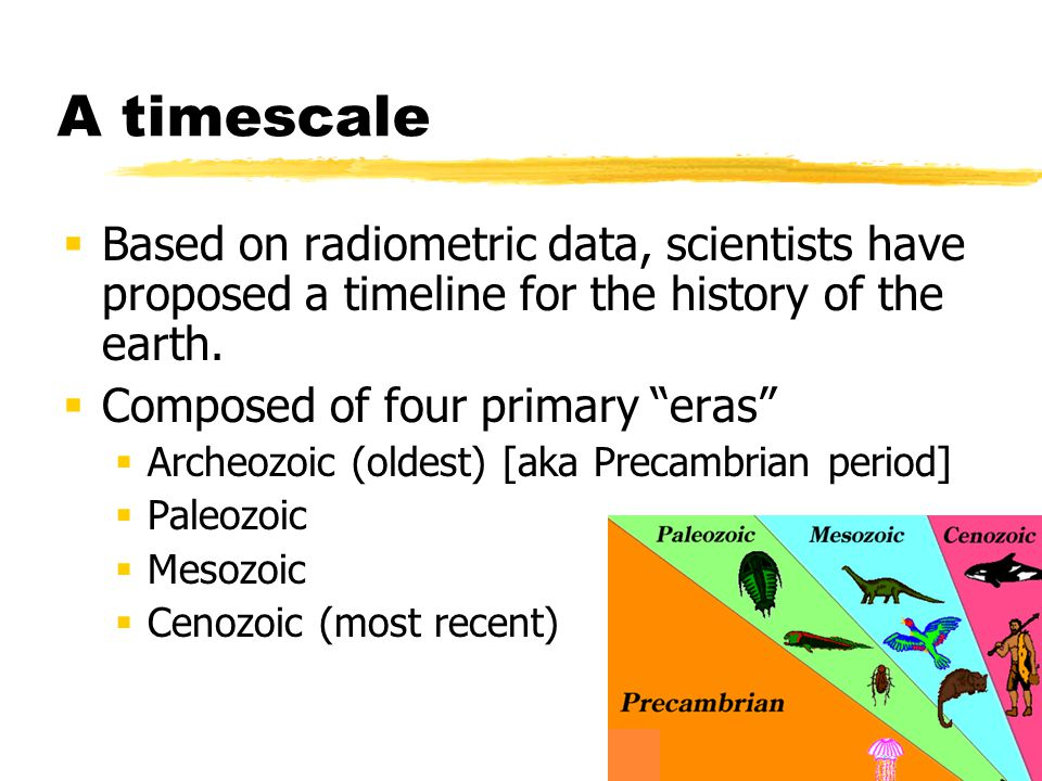 A timescale Based on radiometric data, scientists have proposed a timeline for the history of the earth.