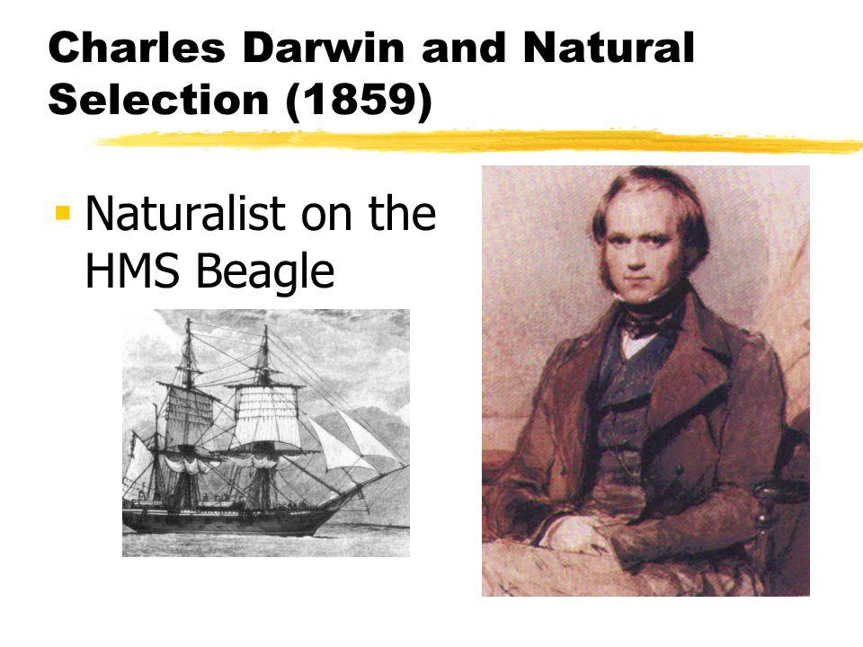 Charles Darwin and Natural Selection (1859)