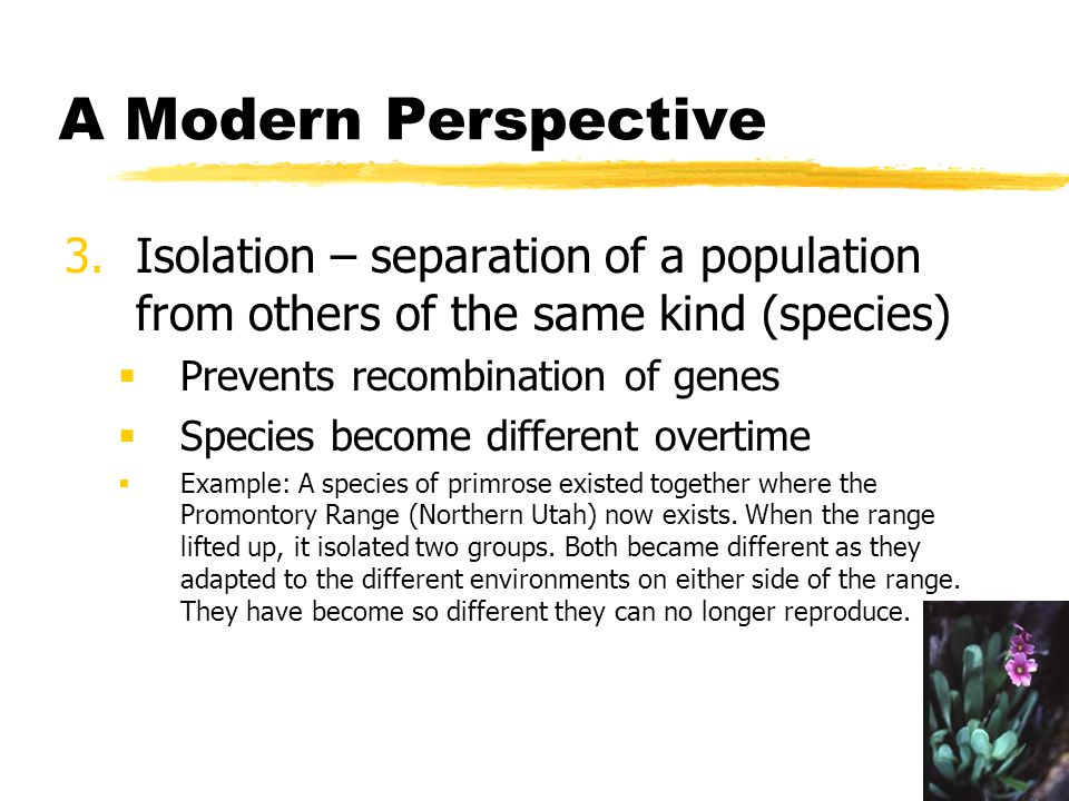 A Modern Perspective Isolation – separation of a population from others of the same kind (species) Prevents recombination of genes.