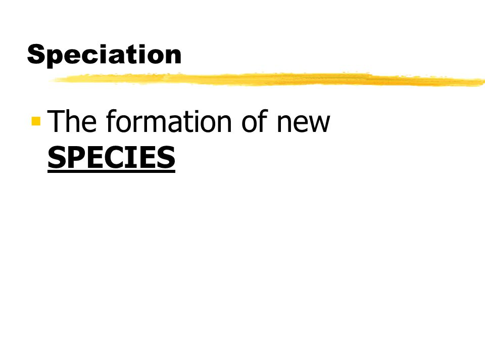The formation of new SPECIES