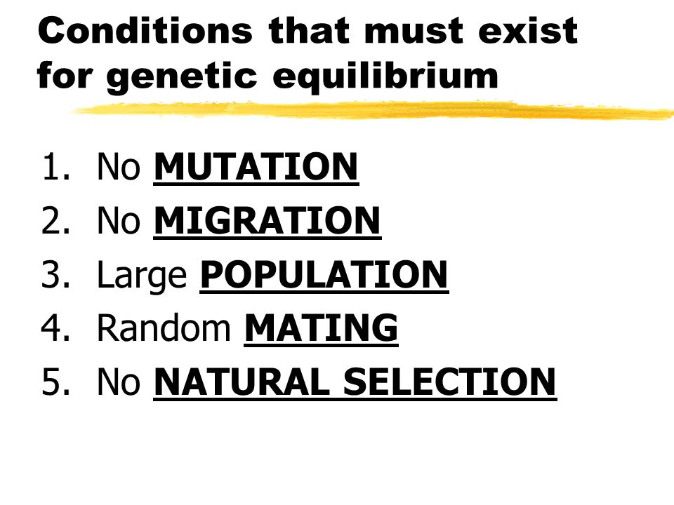 Conditions that must exist for genetic equilibrium