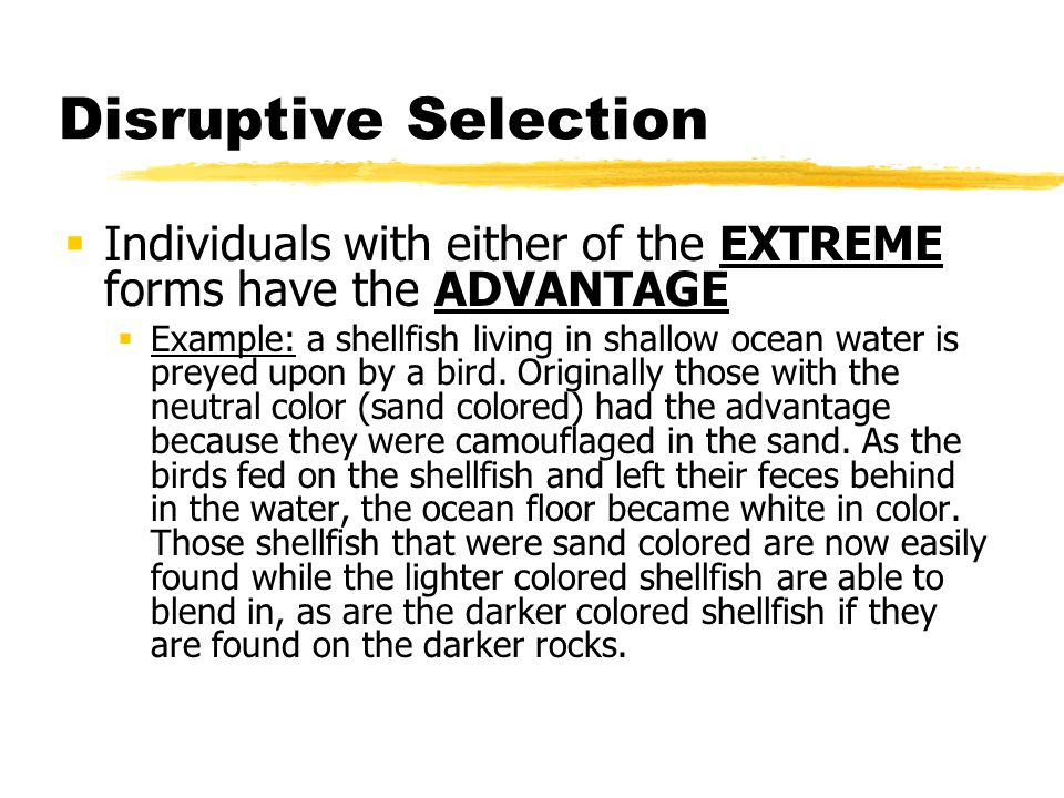Disruptive Selection Individuals with either of the EXTREME forms have the ADVANTAGE.