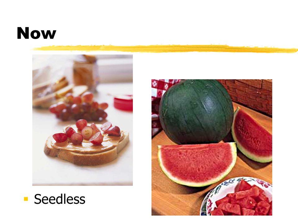 Now Seedless