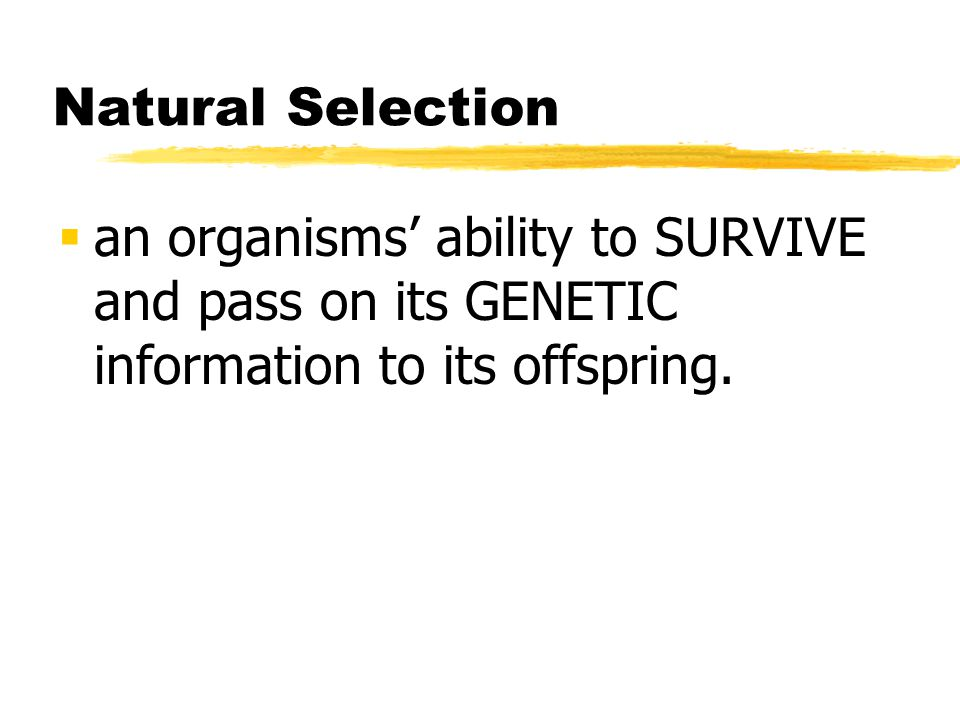 Natural Selection an organisms' ability to SURVIVE and pass on its GENETIC information to its offspring.
