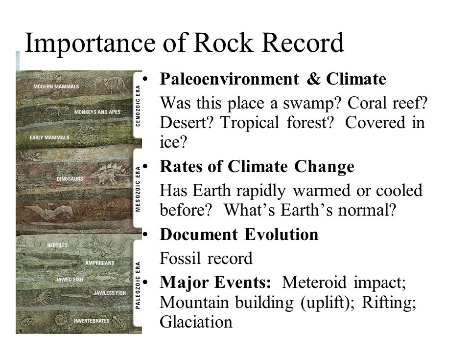 Importance of Rock Record