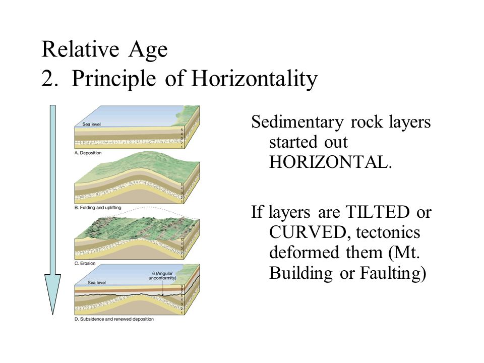 Relative Age 2. Principle of Horizontality
