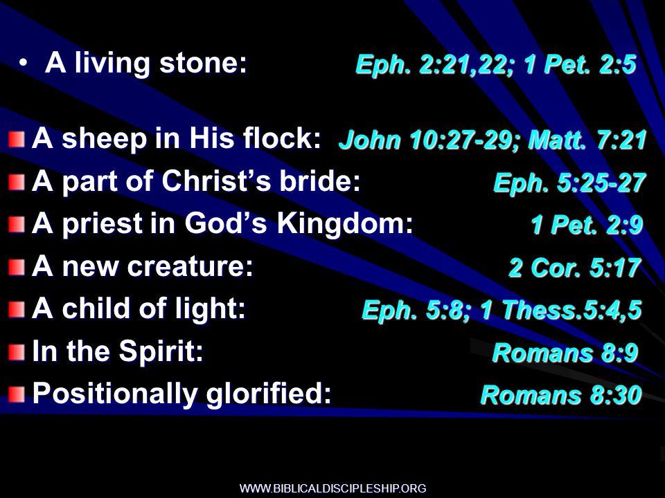 A living stone: Eph. 2:21,22; 1 Pet. 2:5