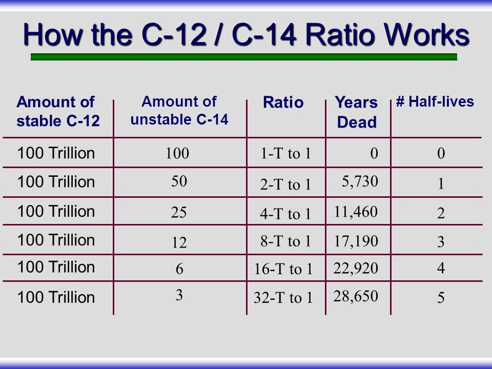 How the C-12 / C-14 Ratio Works