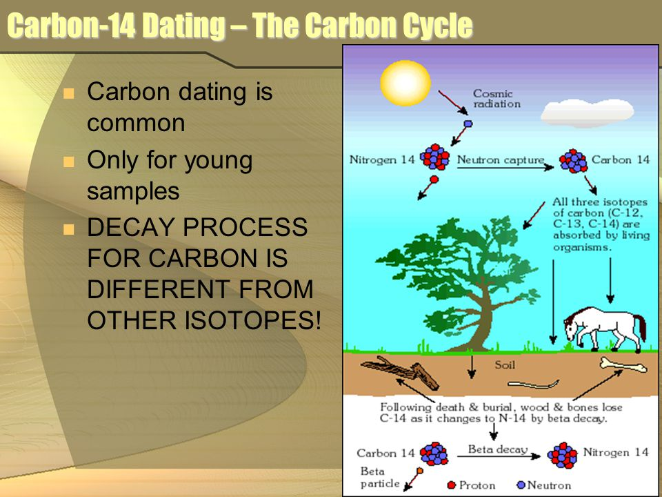 carbon dating age of earth Willard libby invented radiocarbon dating in the  eg uranium series dating  radiocarbon is a useful means for obtaining the age of death of a carbon-bearing.