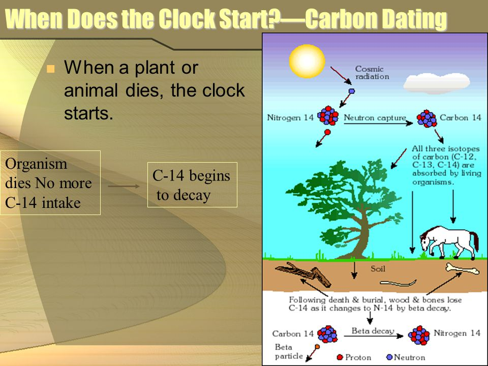 When Does the Clock Start —Carbon Dating