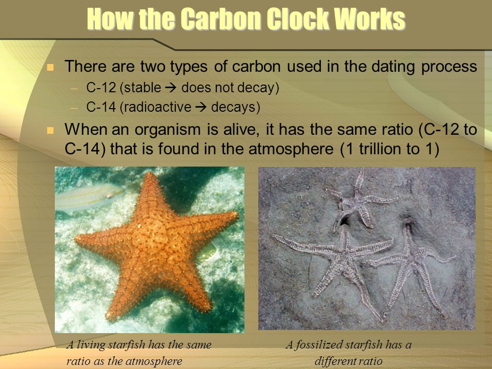 How the Carbon Clock Works