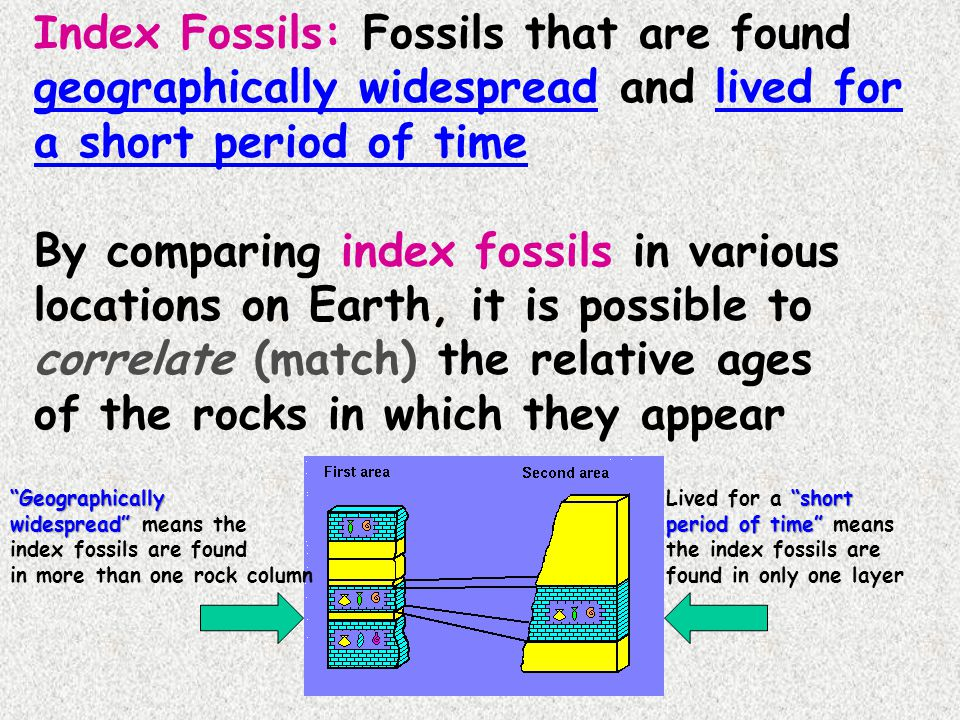 By comparing index fossils in various