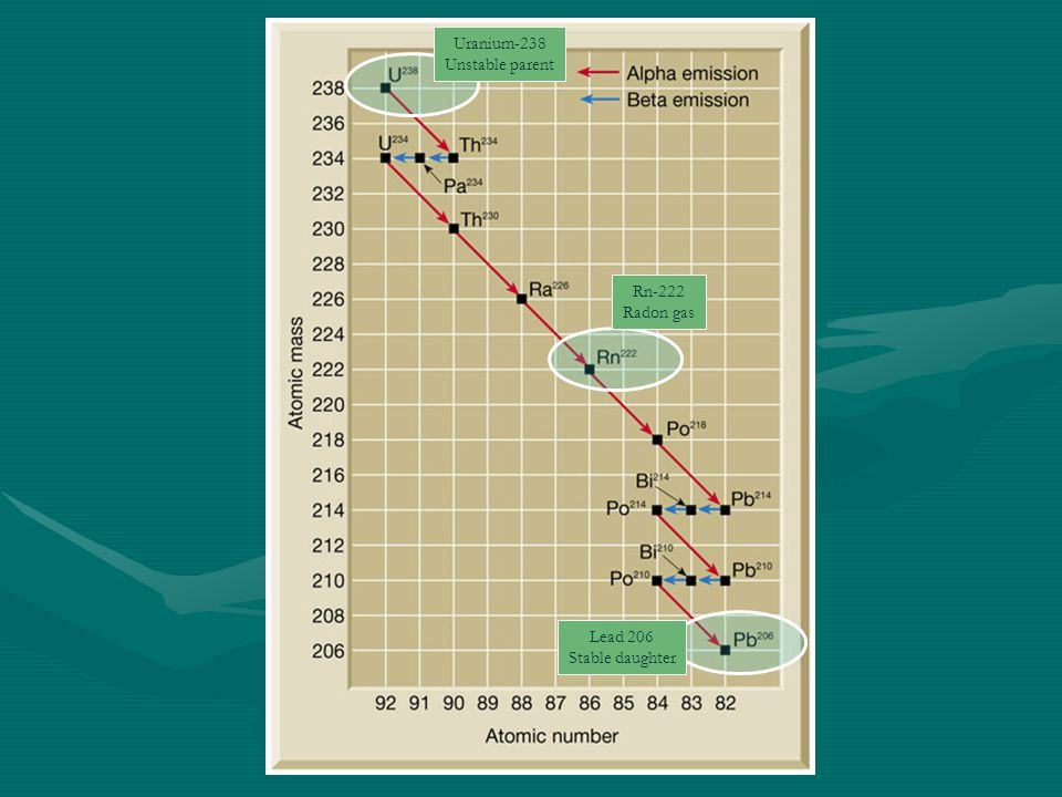 Uranium-238 Unstable parent Rn-222 Radon gas Lead 206 Stable daughter