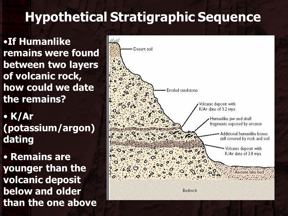 Hypothetical Stratigraphic Sequence
