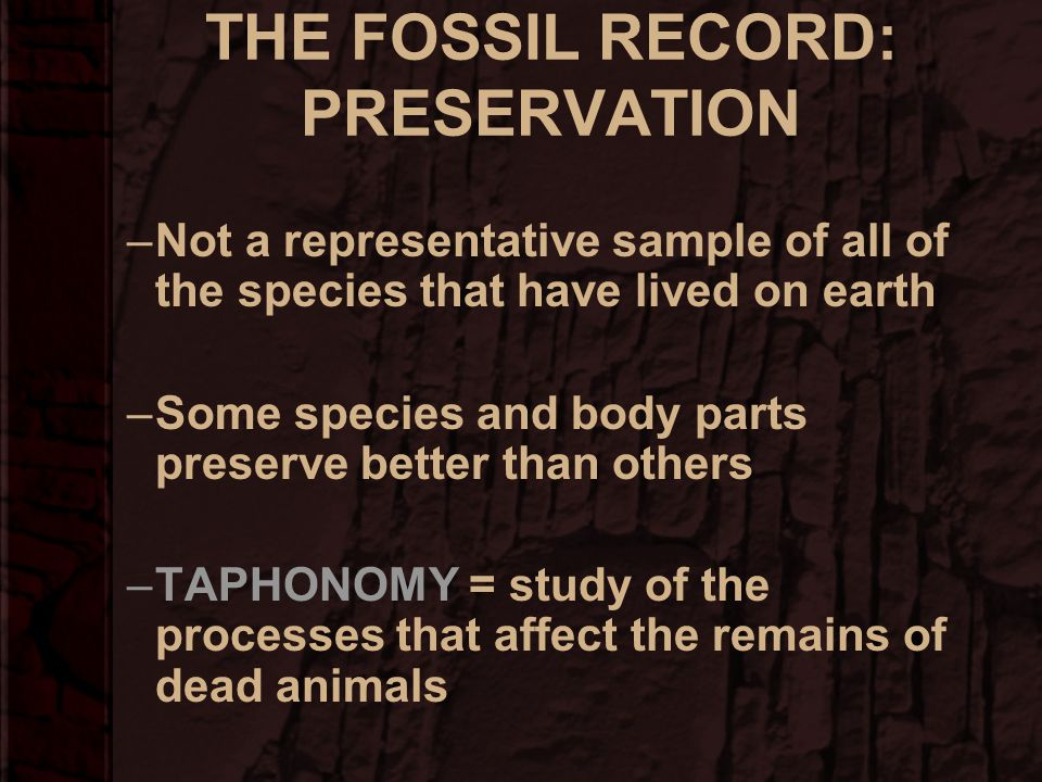 THE FOSSIL RECORD: PRESERVATION