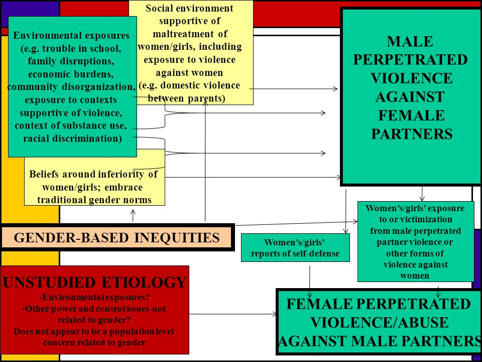 UNSTUDIED ETIOLOGY MALE PERPETRATED VIOLENCE AGAINST FEMALE PARTNERS