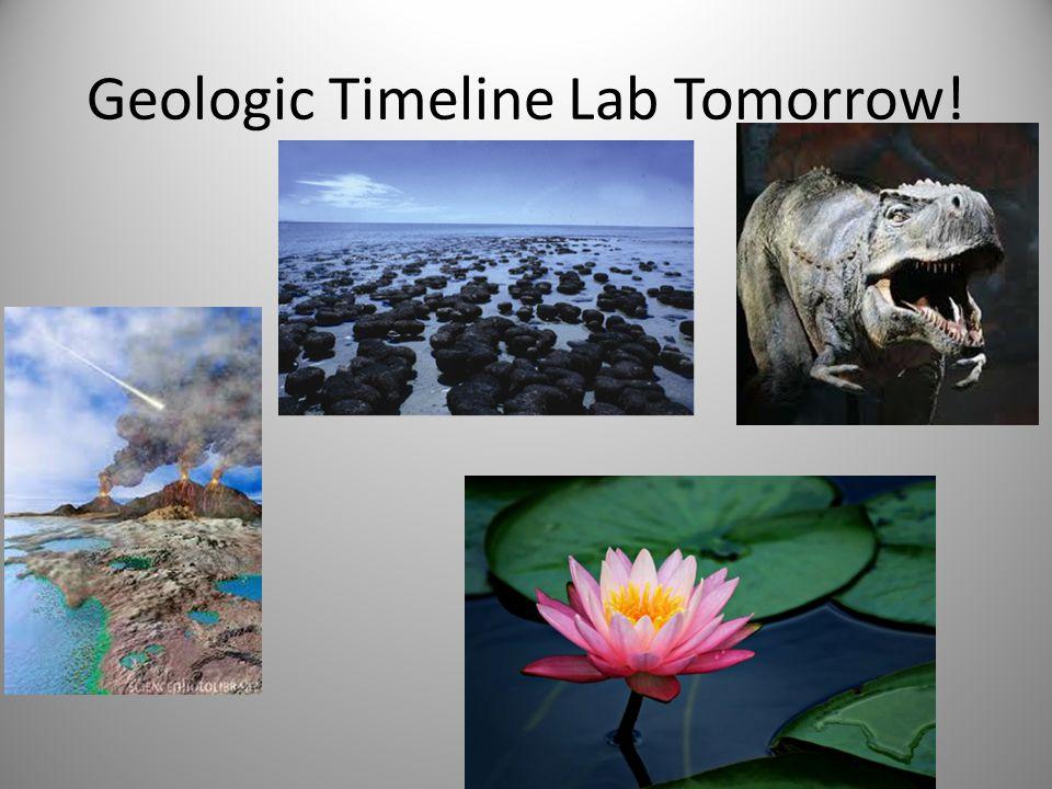 Geologic Timeline Lab Tomorrow!