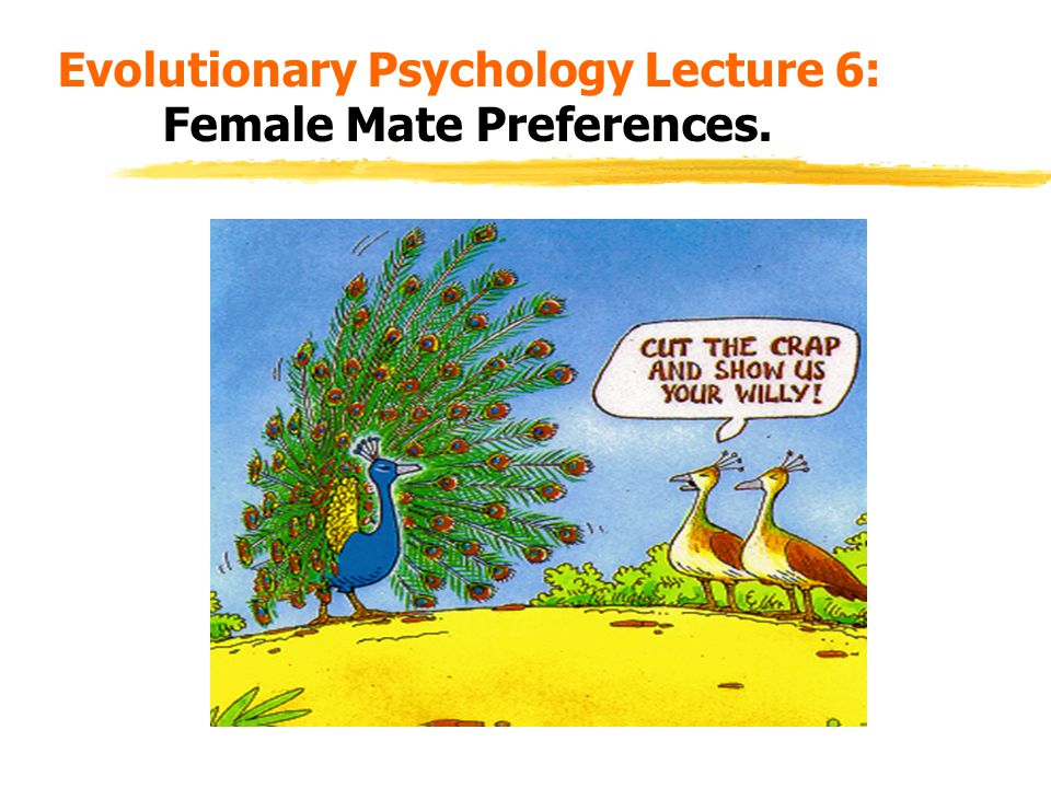 Evolutionary Psychology Lecture 6: Female Mate Preferences.