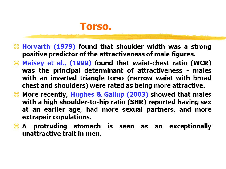 Torso. Horvarth (1979) found that shoulder width was a strong positive predictor of the attractiveness of male figures.
