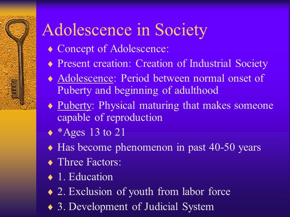 Adolescence in Society