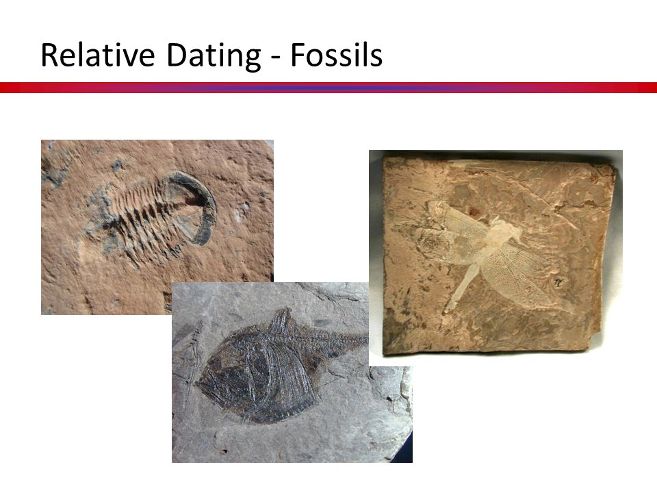 Methods of Dating Fossils