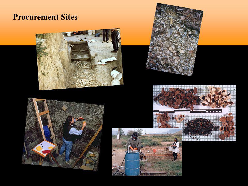 Procurement Sites