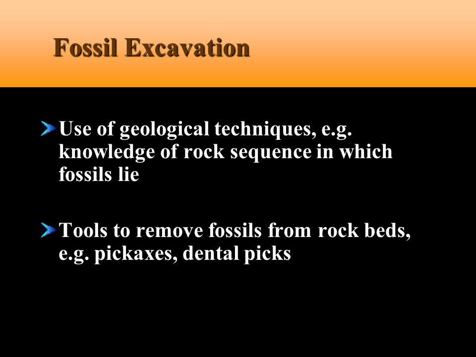 Fossil Excavation Use of geological techniques, e.g. knowledge of rock sequence in which fossils lie.