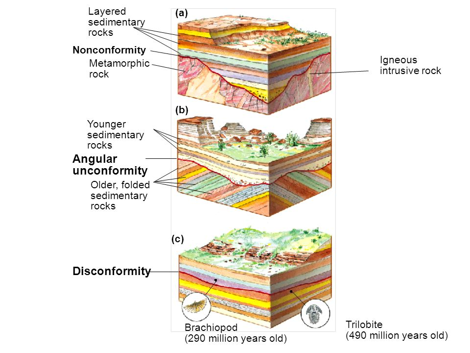 Angular unconformity Disconformity Layered (a) sedimentary rocks