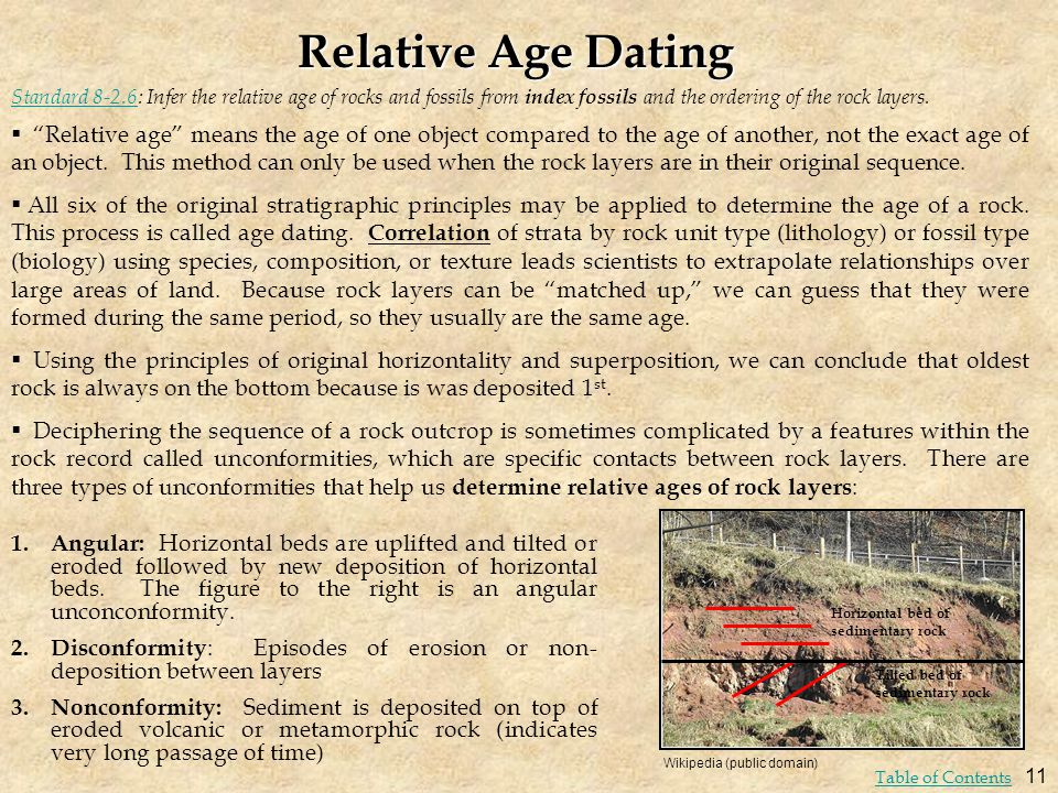 Relative Age Dating Standard 8-2.6: Infer the relative age of rocks and fossils from index fossils and the ordering of the rock layers.