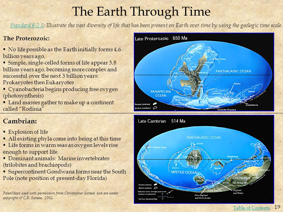The Earth Through Time Cambrian: The Proterozoic: