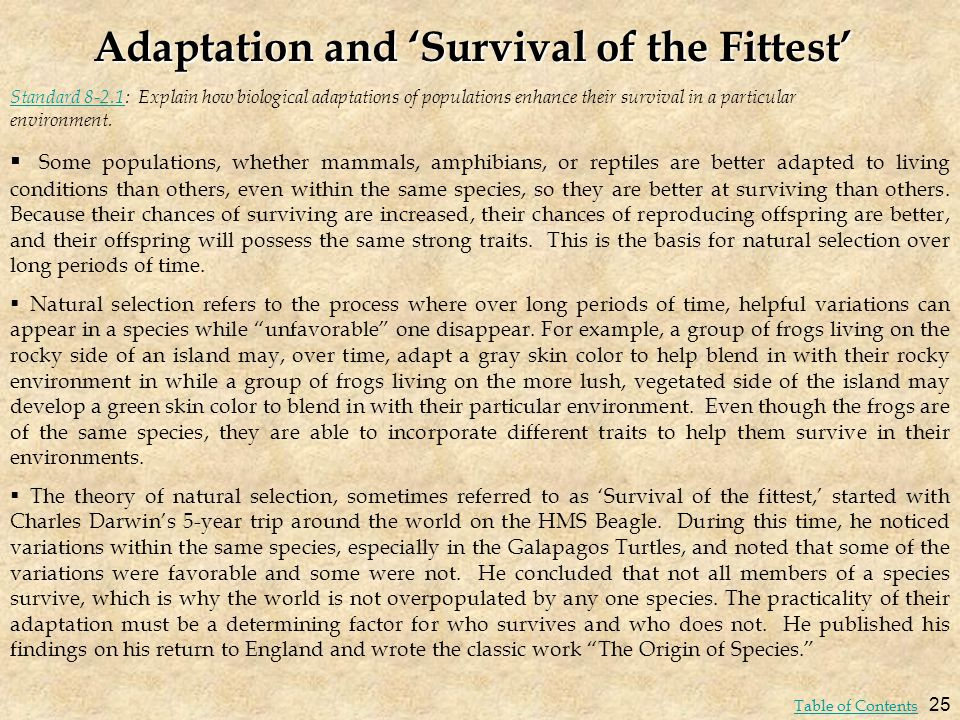 Adaptation and 'Survival of the Fittest'