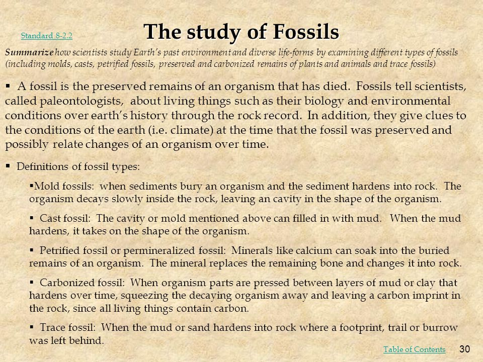 The study of Fossils Standard 8-2.2.