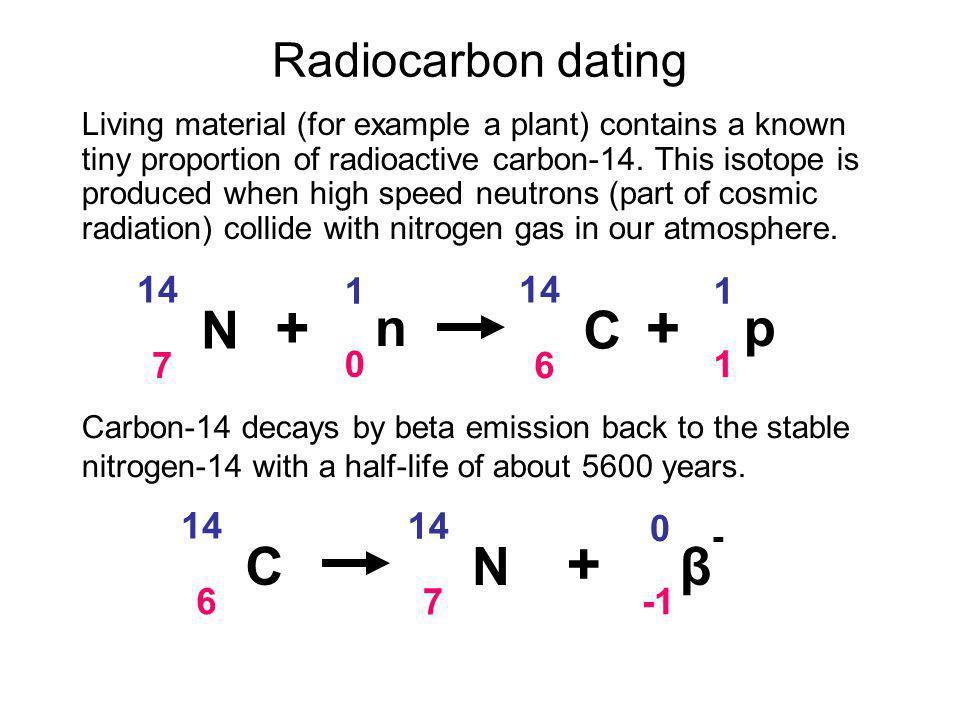+ + + N n C p C N β- Radiocarbon dating 14 7 1 14 6 1 14 6 14 7 -1