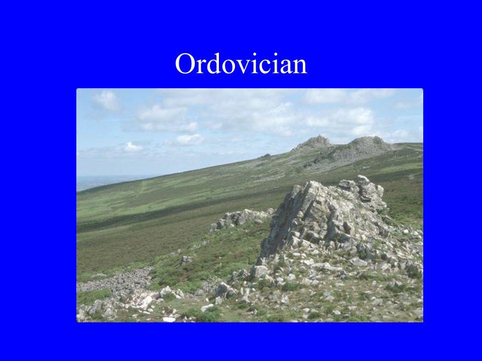 Ordovician
