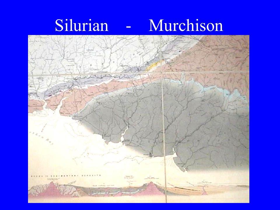 Silurian - Murchison