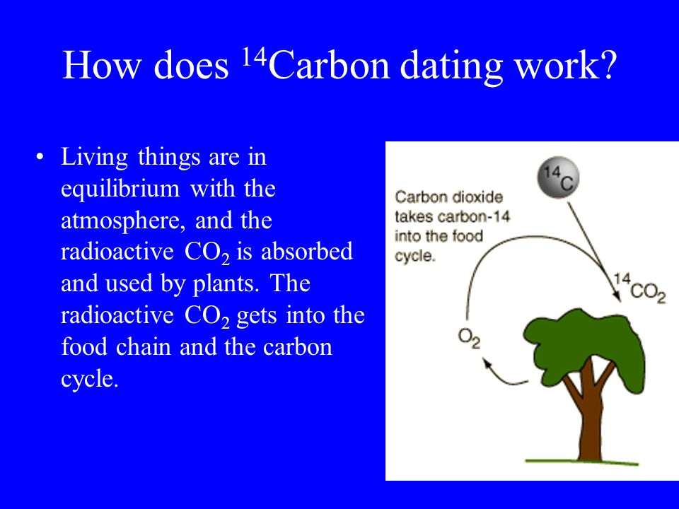 Carbon dating how does it work