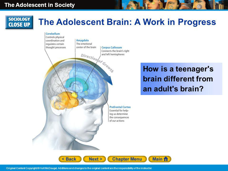 The Adolescent Brain: A Work in Progress