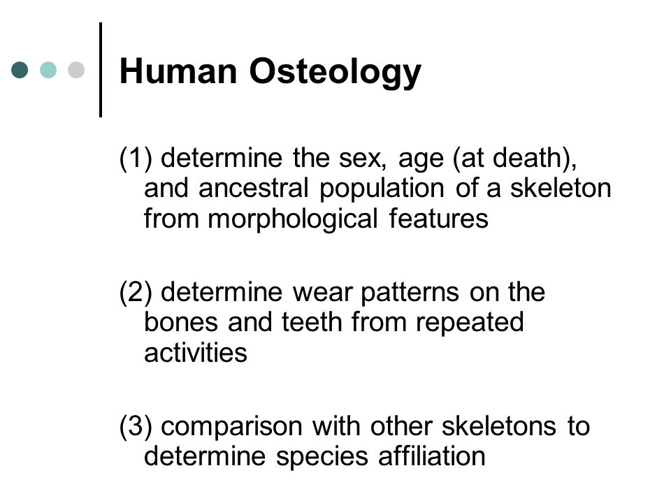 Human Osteology (1) determine the sex, age (at death), and ancestral population of a skeleton from morphological features.