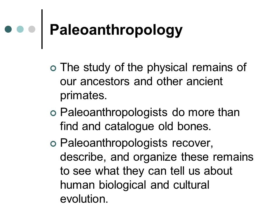 Paleoanthropology The study of the physical remains of our ancestors and other ancient primates.