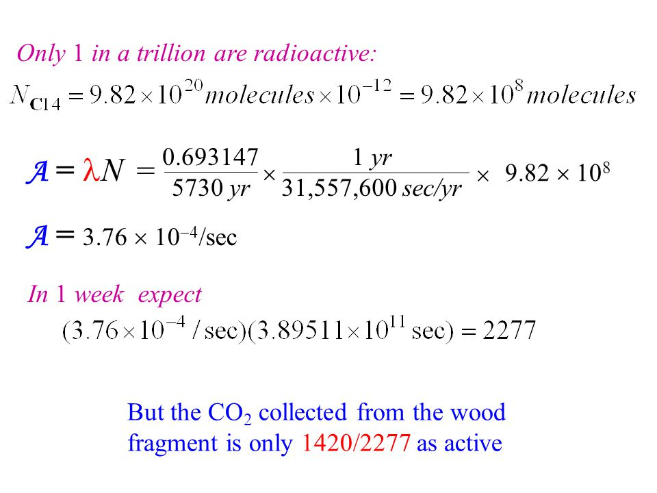A = lN = A = 3.76  10-4/sec Only 1 in a trillion are radioactive: